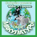 20 апреля в гимназии №505 пройдет акция «Спасем дерево»